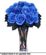 blue-roses-1